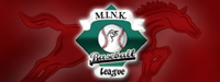 M.I.N.K Baseball League