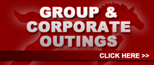 Group Corporate Outings