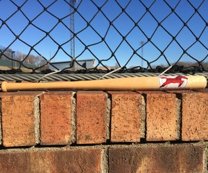 Mustangs Mini Bat.jpg