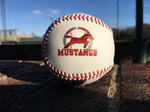 Mustangs baseball.JPG