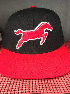 Black and Red Mustangs Fitted Hat.jpg